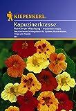 Kiepenkerl 910128  Kapuzinerkresse, Tropaeolum majus Rankende Mix