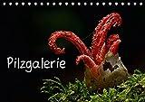 Pilzgalerie (Tischkalender 2018 DIN A5 quer): Faszinierende Pilzaufnahmen (Monatskalender, 14 Seiten ) (CALVENDO Natur) [Kale