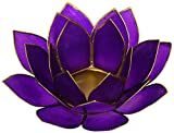Violet (7th Chakra) Capiz Shell Lotus Tea Candle Light Holder by Find Something Different