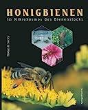 Honigbienen: Im Mikrokosmos Des Bienenstocks (German Edition)