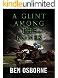A Glint Among the Bones (Danny Rawlings Mysteries Book 7)