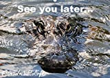 See you later ... Florida Wildlife (Wandkalender 2020 DIN A2 quer): Alligatoren und andere Spezies aus der Fauna Florida's (Monatskalender, 14 Seiten ) (CALVENDO Natur) -