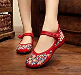 L-RUN Womens Embroidery Mary Jane Shoes Casual Ladies Old Peking Office Work Strap Flats Shoes …