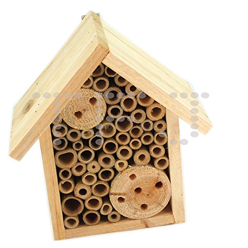 Wooden Insect And Bee Hotel Box (Pack of 1) Test