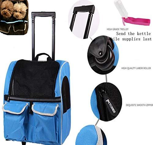 DINGG Pet Trolley Zaino Zaino Portatile Cane Pacchetto Viaggio Teddy Under 10 kg Cucciolo,Blue