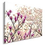 Feeby BLUMEN Bild auf Leinwand Größe: 50x70 cm, 1 Teilig Leinwanbild Wandbild Kunstdrucke Wanddeko NATUR ROSA