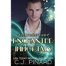 Enchanted Immortals 2: The Vortex