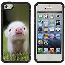 STPlus Mignon Cochon Animal Coque Souple Antichoque Étui Cache pour Apple iPhone SE / 5 / 5S