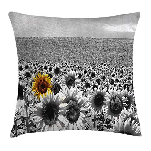 CHSUNHEY Kopfkissenbezüge,Wide Tap Sunflower Field All Black and White with a Single Yellow Flower Spring Landscape Image,Home Decorative Square for Sofa Throw Pillow Case 18