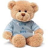 Gund 30cm It's A Boy Message Bear Soft toy