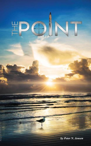 The Point (Adventures in Naples, Florida Book 2) (English Edition)
