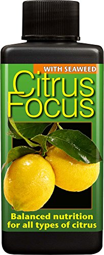 citrus-focus-balanced-liquid-concentrated-fertiliser-100ml