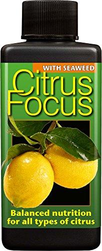 citrus-focus-balanced-liquid-concentrated-fertiliser-100ml
