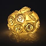 20 LED Battery Operated Rose Flower Fairy Lights Wedding Garden Party Christmas Decoration String Lights (Warm White)