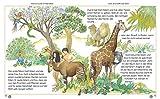 Meine bunte Kinderbibel - 3