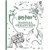 YSZDM Adult Coloring Book: Secret Garden Decompression Coloring Book Harry Potter Füllfarbe handgemachtte Graffiti-Malerei: Farbbuch für Erwachsene Paperback