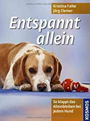Entspannt allein: So klappt das Alleinbleiben bei jedem Hund