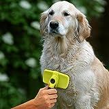 Pecute Selbstreinigende Activet Hundebürsten