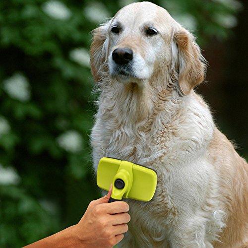 Pecute Zupfbürste Fellpflege Hundebürste für gesundes glänzendes Fell ohne Ziepen gegen Verfilzungen - 6
