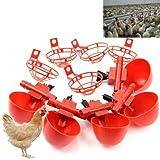 HeroNeo ® Lot de 5 volailles eau potable Cups- poulet en plastique automatique pour système abreuvoir pour poules