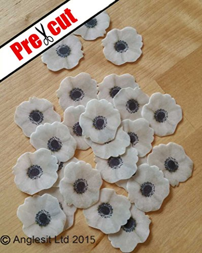 PRE-CUT ANEMONE FLOWER EDIBLE RICE / WAFER PAPER CUP CAKE TOPPERS PARTY BIRTHDAY DECORATION by Anglesit Flowers Anemone Cup