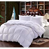 WSLOVEHHY Pluma de algodón cálido anti polvo colcha edredón mitef, múltiples tamaños, ,220*240 Blanco (4.0kg)