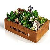 e-meoly Juego de 2pcs de madera caja de ventana de jardín rústico rectangular macetero, de flores suculentas maceta contenedor caja