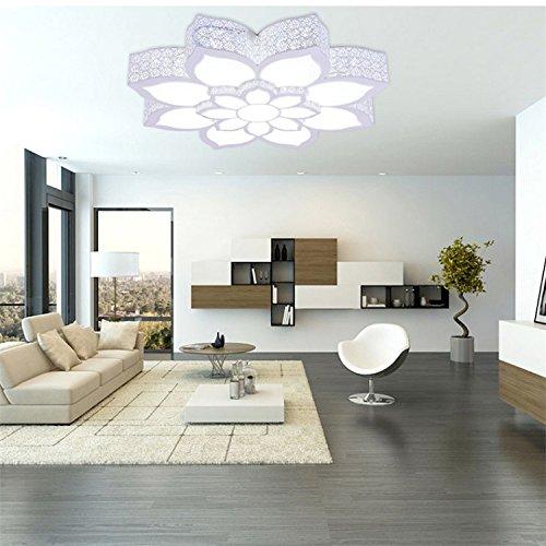 Ferro Lotus acrilico soffitto circolare moderno moda minimalista potere creativo energia 32-74w risparmio interruttore di comando a distanza , white light , 32w 55*13cm