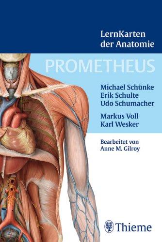 Prometheus Lernkarten der Anatomie: Box mit 367 Lernkarten aus den Gebieten Rücken, Thorax, Abdomen und Becken, Obere Extremität, Untere Extremität, Kopf und Hals sowie Neuroanatomie