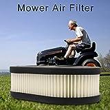 SOWLFE 2 pezzi 1 pezzo di ricambio del filtro dell'aria, diserbo accessori Premium filtro dell'aria durevole di ricambio per spingere prato tosaerba e trattori filtro dell'aria fit