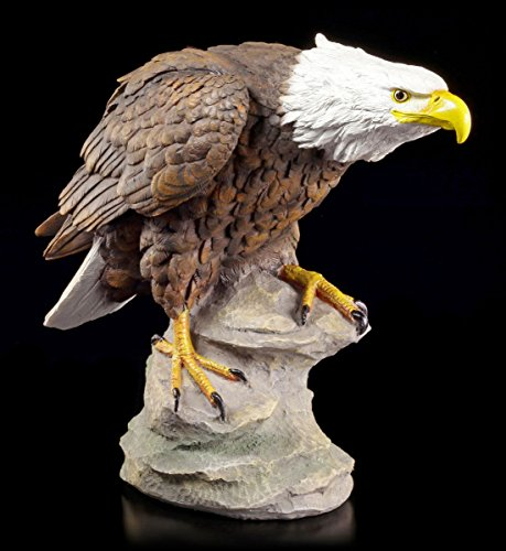 Große Adler Gartenfigur - Weißkopfseeadler auf Fels - Garten Deko Vogel