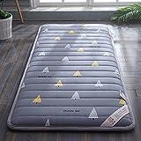 HYXL Dicken Tatami Boden Matte Kissen Matratze,Weiches Student matratze schlafsaal einzelbett matratze pinzetten sind verdickt, um warm zu halten-B 90x200cm(35x79inch)