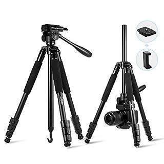Kamera Stativ, Albott Alu Fotostativ Reisestativ 156cm Dreibein Stativ (Max.6KG Tragbarkeit) mit 360 Grad Kugelkopf für DSLR-Kamera Video Camcorder und Smartphone inkl. Tasche