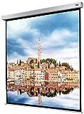 celexon Beamer-Leinwand Motor Professional Plus 240 x 240 cm | Format 1:1 | Leinwand für alle Projektorsysteme | Gainfaktor 1,2 | Geeignet für Heimkino & Präsentationen | Wand- oder Deckenmontage