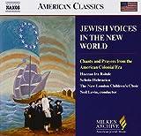 Les Voix Juives Du Nouveau Monde