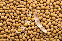 Sri Satymev SOYA Bean Seeds 1kg
