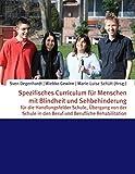 Spezifisches Curriculum für Menschen mit Blindheit und Sehbehinderung: für die Handlungsfelder Schule, Übergang von der Schule in den Beruf und Berufliche Rehabilitation