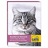 Cats Protection Stationery - Notecard Pack (A6) Beautiful Cats