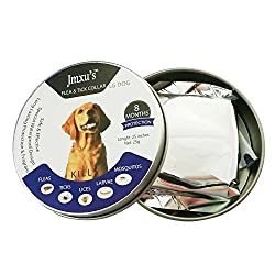 WeiLi Flea and Tick Collar for Dogs Tick Collar for Flea Treatment Prevention Control One Size Fits All 6 Month Protection (Dog 8 Month Protection) from WeiLi