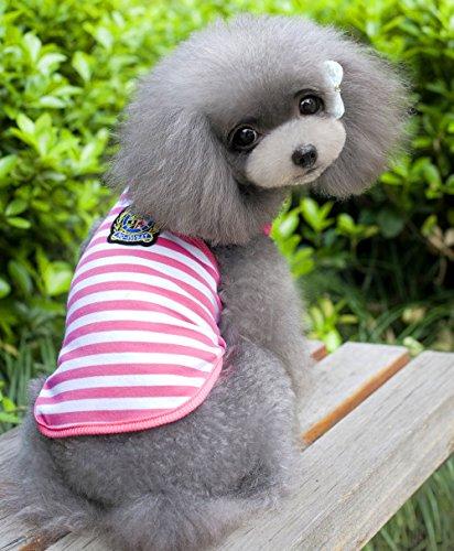smalllee _ Lucky _ store British gestreift Vest Shirt Sommer Baumwolle Tshirt klein Hunde Kleidung Kostüm Garment L M S XL XXL