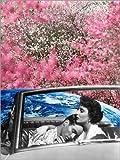 Posterlounge Forex-Platte 60 x 80 cm: Heller Stern, wäre Ich so fest Wie Du von Rosa Picnic