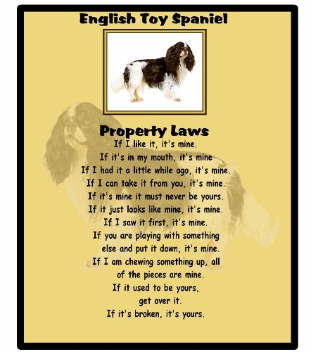 magnetsandhangers English Toy Spaniel – Property Laws – Mouse mat
