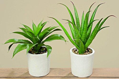2 x Agave im weissen Topf Kunstpflanze Dekoration Pflanze Dekopflanze Geschenk