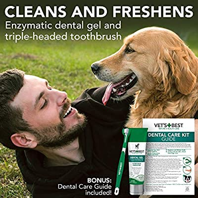 Vet's Best Enzymatic Plaque and Tartar Fighting Dental Care Toothpaste and Toothbrush Kit for Dogs from The Bramton Company, uk pets,