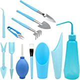 KINGLAKE 12 pièces Kit d'outils de Transplantation Succulente Mini Jardin Plantation Lot d'outils à Main