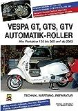 Vespa GT, GTS, GTV Automatik-Roller: Alle Viertakter 125 bis 300 cm3 ab 2003 by Hans J. Schneider(22. Dezember 2010)