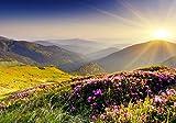 Vliestapete Bergrücken im Sonnenlicht 400cm x 280cm Fototapete Tapete - Wanddeko - Tapete - Wandbild - Fotogeschenk - Wand Dekoration