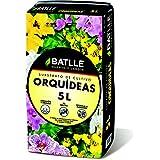 Semillas Batlle 960046PIC - Sustrato Orquídeas 5L, 31 x 25 x 31 cm, color amarillo y turquesa