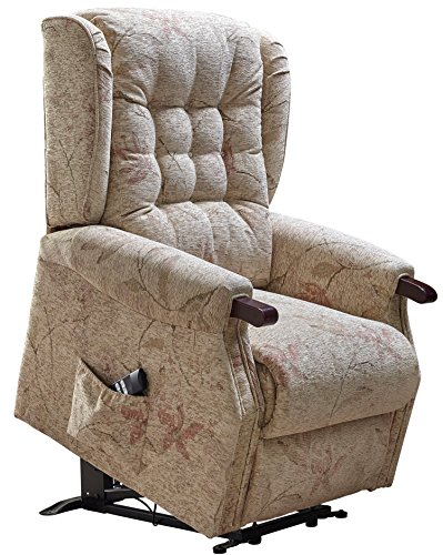 Warwick Dual motor electric riser and recliner ...  sc 1 st  BuySellMobility & Warwick Dual motor electric riser and recliner chair with wooden ... islam-shia.org