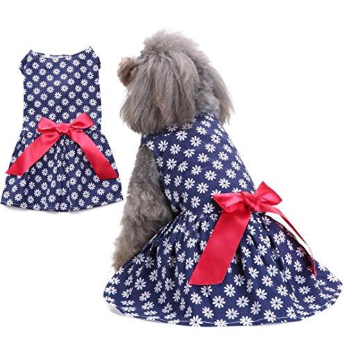 Sommer Haustier-Kleidung❤️heißer Verkauf! Katzenkostüm Hund Katze Bogen Tutu Kleid Spitze Rock Pet Puppy Dog Princess Kostüm Bekleidung Kleidung (Blau, M) (Totoro Kostüm Baby)